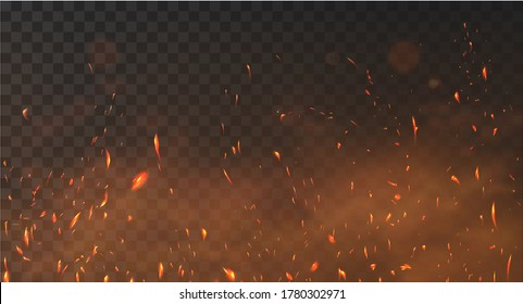 Realistic fire sparks background on a transparent background. Burning hot sparks effect with embers burning cinder and smoke flying in the air. Heat effect with glow and sparks from bonfire. Vector