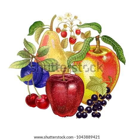 Realistic Fruit Decoration Apples Cherries Black Stock Vector