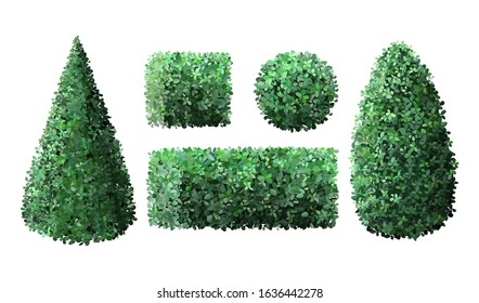 Realistic garden bushes. Topiary boxwood gardener evergreen fence with leaves, geometric tree crown bush foliage nature green seasonal shrub vector isolated 3d illustration set