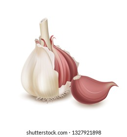 Realistic garlic isolated on white background. Vector illustration
