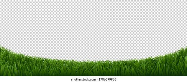 Realistic grass border. Green herb lawn, garden herb plants frame, fresh lawn border element vector background. Horizontal border lawn grass, meadow field green illustration