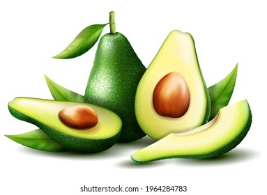 Realistic green avocado for healthy eating. 3D rendering. Whole, slice and halved avocado with bone. Composition of ripe avocado with leaves. Vector illustration isolated on white background.