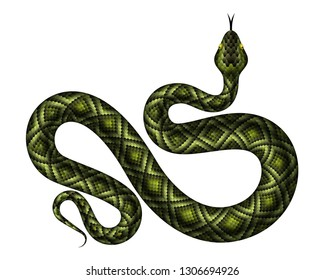Realistic green python vector illustration. Isolated tropical snake on white background
