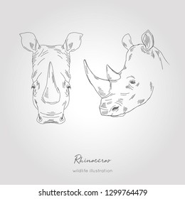 Realistic hand drawn vector sketch of rino heads front and profile view