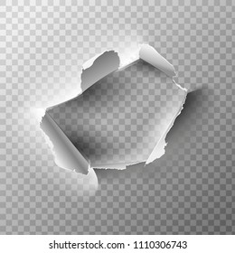 Realistic holes in paper isolated on transparent backgroun. Vector illustration.