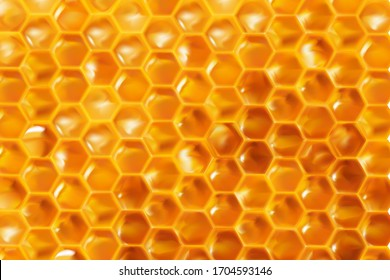 Realistic Honeycombs background. Bright color texture honey, 3D hexagons for banner, advertising or wallpaper. vector illustration.