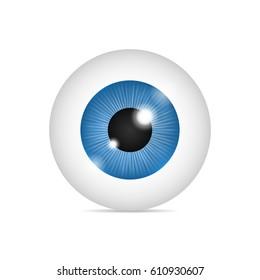 Realistic human eyeball. Blue eye on white background