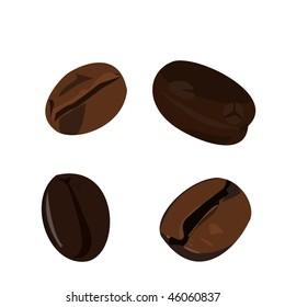 Realistic illustration coffee bean - vector