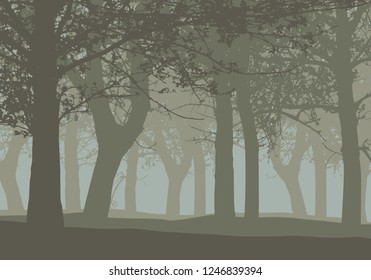 Realistic illustration of a deciduous deep forest with trees and with mist gray sky - vector