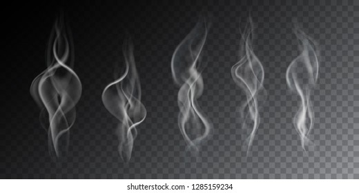 Realistic illustration of haze, cigarette smoke or steam over a hot drink, isolated on a transparent background - vector