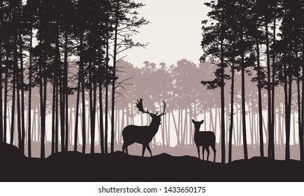 Realistic illustration of landscape with coniferous forest with pine tree and morning retro sky. Deer and doe with antlers standing. Suitable as advertising for hunting or nature - vector