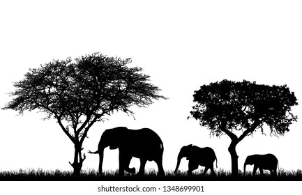 Realistic illustration of landscape with trees in african safari. A family of three elephants walking on grass - vector