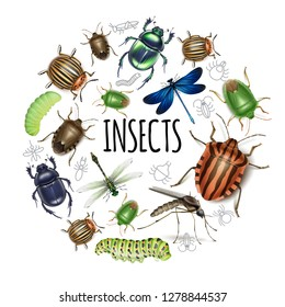 Realistic Insects Round Concept