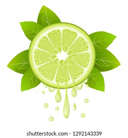 Realistic lime slice with leaves and drops of juice. Juicy fruit. Fresh citrus design on white background vector illustration