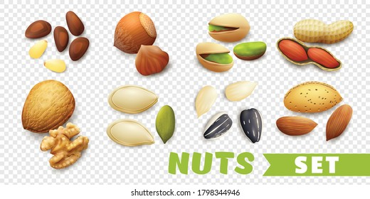 Realistic nuts set with walnut seeds pistachio almond peanut isolated on transparent background vector illustration
