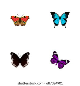 Realistic Papilio Ulysses, Spicebush, American Painted Lady And Other Vector Elements. Set Of Butterfly Realistic Symbols Also Includes Bluewing, Black, Butterfly Objects.