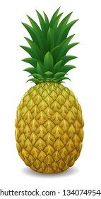 Realistic pineapple. 3d illustration isolated on white background