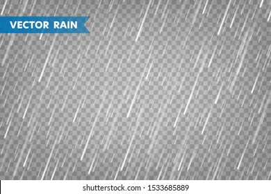 Realistic rain texture on transparent background. Rainfall, water drops effect. Autumn wet rainy day. Vector illustration.