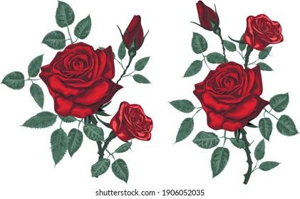 Realistic red Roses - Vintage vector roses isolated