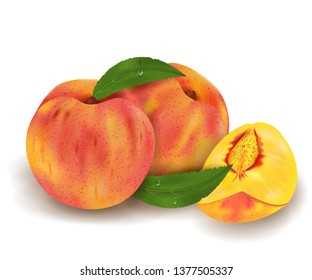 Realistic Ripe peaches whole and slice, green leaves with drops. Juicy fruit 3d illustration high detail isolated on white background. Vector illustration.