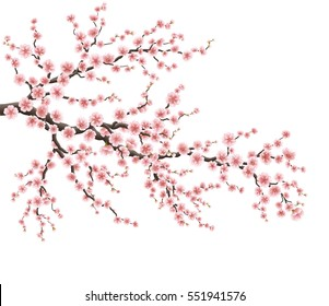 Realistic sakura japan cherry branch with blooming flowers. EPS 10 vector file included