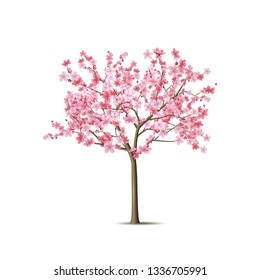 Realistic sakura tree. Elegant japanese symbol. Blooming plant with pink flower petals. Asian cultural symbol. Floral spring design decoration. Vector illustration.