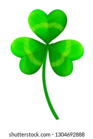 Realistic shamrock clover in the white background.Vector illustration , for St. Patrick`s day.