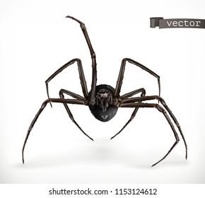 Realistic spider, Halloween 3d vector icon