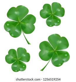 Realistic three-leaved shamrock. Symbol of St. Patrick's Day. 3d realistic isolated vector.