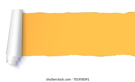 Realistic torn open paper with space for text on orange, horizontal background, holes in paper. Torn strip of paper with uneven, torn edges. Coiling torn strip of paper