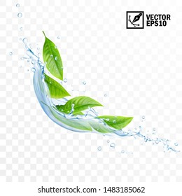 Realistic transparent isolated vector falling splash of water with leaves