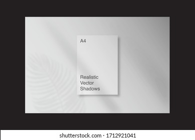 Realistic, transparent shadow overlay effects for branding. A4 format Mockups. Scenes of natural lighting. Photo-realistic vector illustration. Plant leaves and window frames overlays shadows