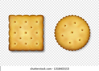 Realistic Vector 3d Round and Square Delicious Salty Cookies Rustic, Cracker, Biscuit Icon Set Closeup Isolated on White Background. Design Template of Sweet Cookie, Yummy Crackers, Breakfast Snack