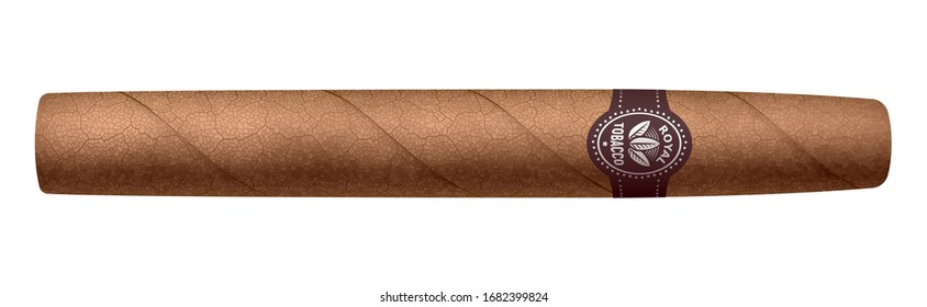 Realistic vector cigar isolated on white background. RGB. Global colors
