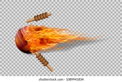 Realistic vector cricket ball in fire on transparent background.