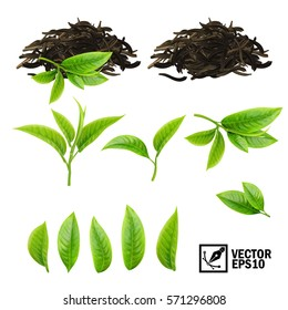 Realistic vector elements set of tea (fresh leaves and pile dry tea)