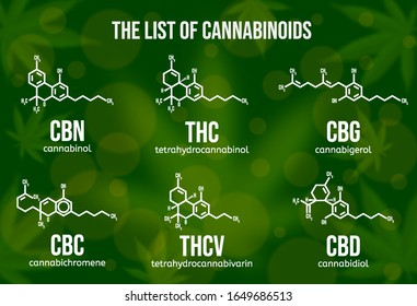 Realistic vector illustration of cannabinoid compounds. Chemical structure of cannabis components. Types of cannabinoids on the green colored background. Psychoactive ingredients in cannabis.