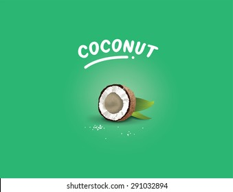 Realistic vector illustration of coconut taste for labels. Halved coco nut.