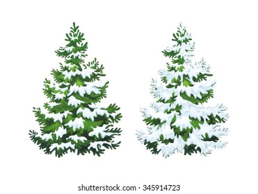Realistic vector illustration of fir tree in snow on white background. Green fluffy pine, isolated on white background 1.1