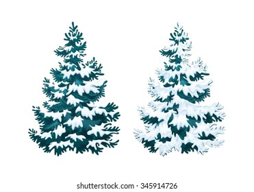 Realistic vector illustration of fir tree in snow on white background. Blue fluffy pine, isolated on white background 2.1