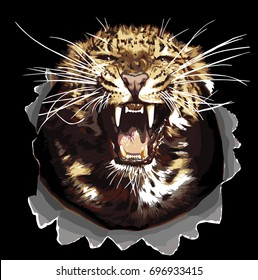 realistic vector Jaguar head isolated on black background. Angry leopard or jaguar roaring with bared teeth and aggressive. Wild big cat for t-shirt print, tattoo design or sticker on racing transport