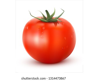realistic vector red tomato on a white and transparent background