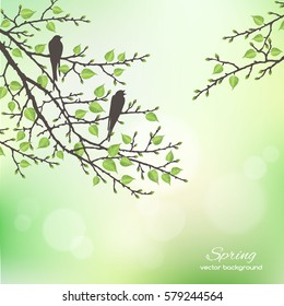 Realistic vector silhouette spring tree for your design on the green background. Vintage hand drawn illustration with space for text