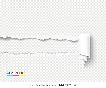 Realistic vector teared off paper hole with curly cardboard scroll and rip edges on transparent background. Empty card banner for advertisement or sale promo.