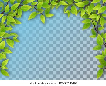 Realistic vector tree branches with green leaves in arch form. Element of natural design. Isolated on a transparent background.