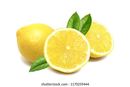 Realistic vivid juicy lemon vector mesh with transparent shadows and leaves.