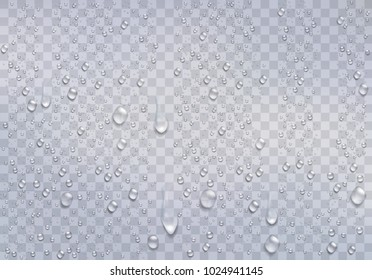 Realistic water droplets on the transparent window. Vector