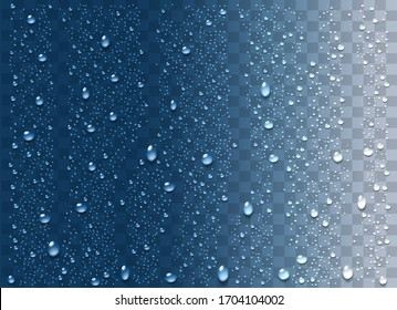 Realistic water droplets on the transparent background. Vector