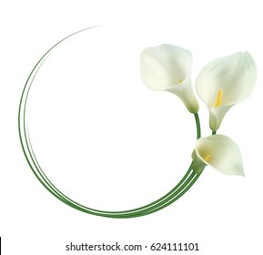 "Realistic white calla lily frame. ""Admire your beauty""."