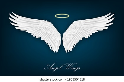 Realistic wings. Pair of white isolated angel style. Spirituality and freedom concept. Vector illustration on dark background